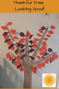Thankful tree looking good