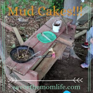 Mud Cakes!