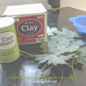 Air Dry Clay Craft Project Supplies