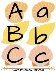 Sea Shell Alphabet Flashcards. Uppercase and Lowercase. Subscribe for Busy Box Printable Access.