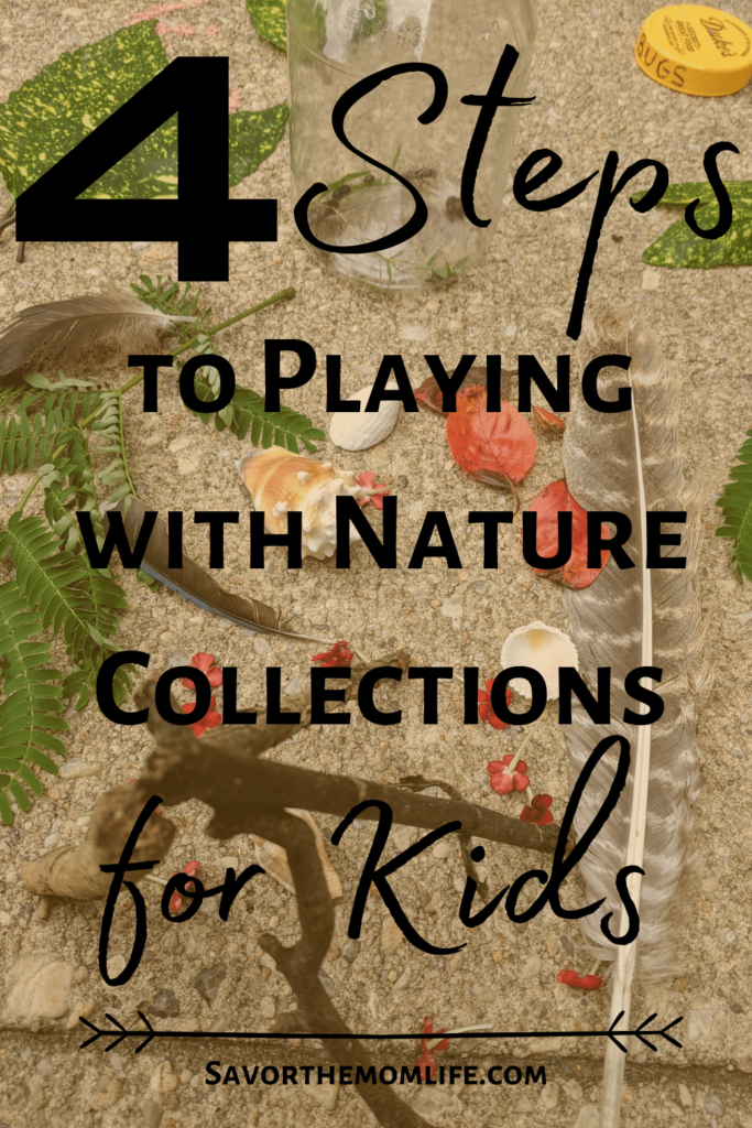4 Steps to Playing with Nature Collections for Kids