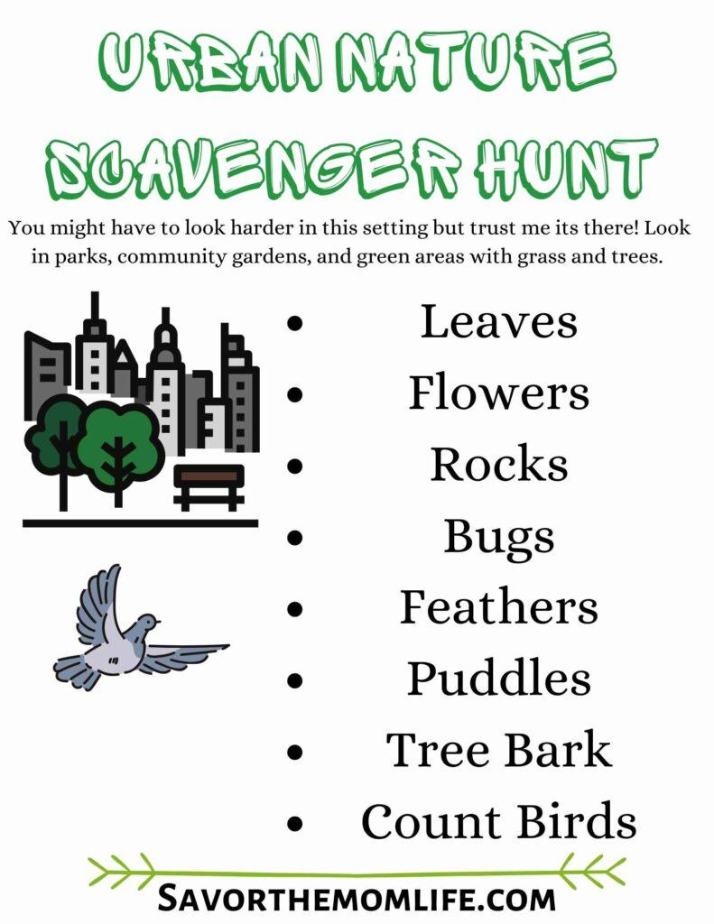 Urban Nature Scavenger Hunt