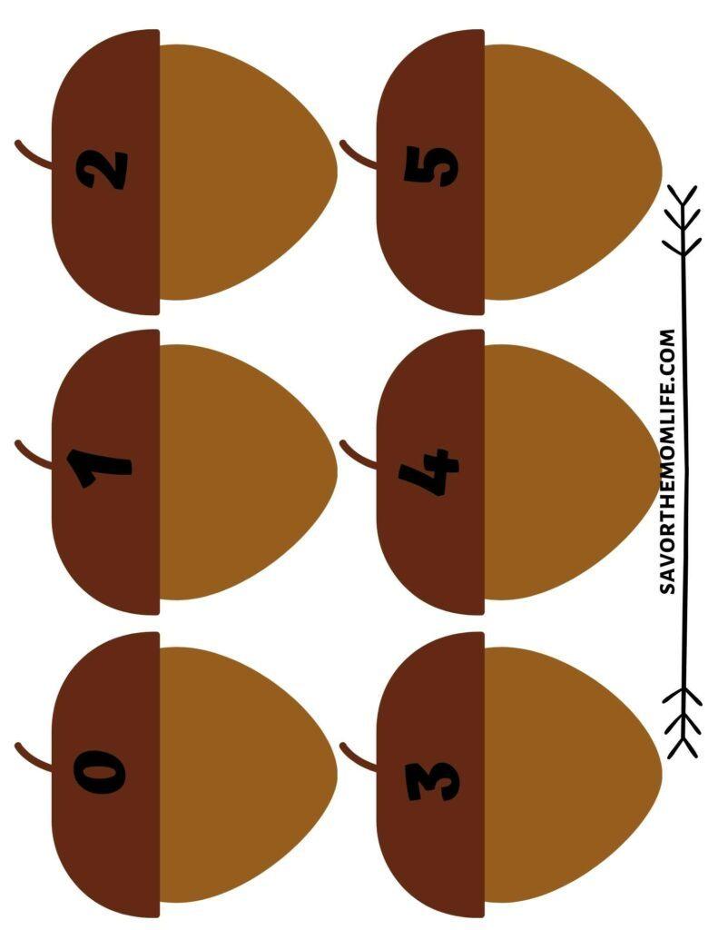Acorn counting mat