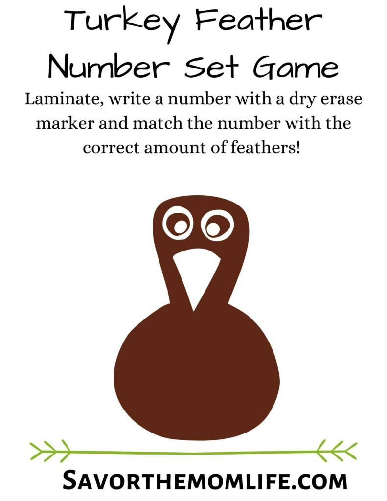 Turkey Feather Number Set Game