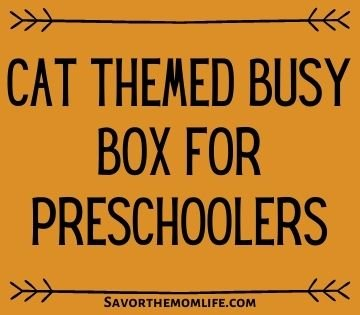 Cat Themed Busy Box for Preschoolers