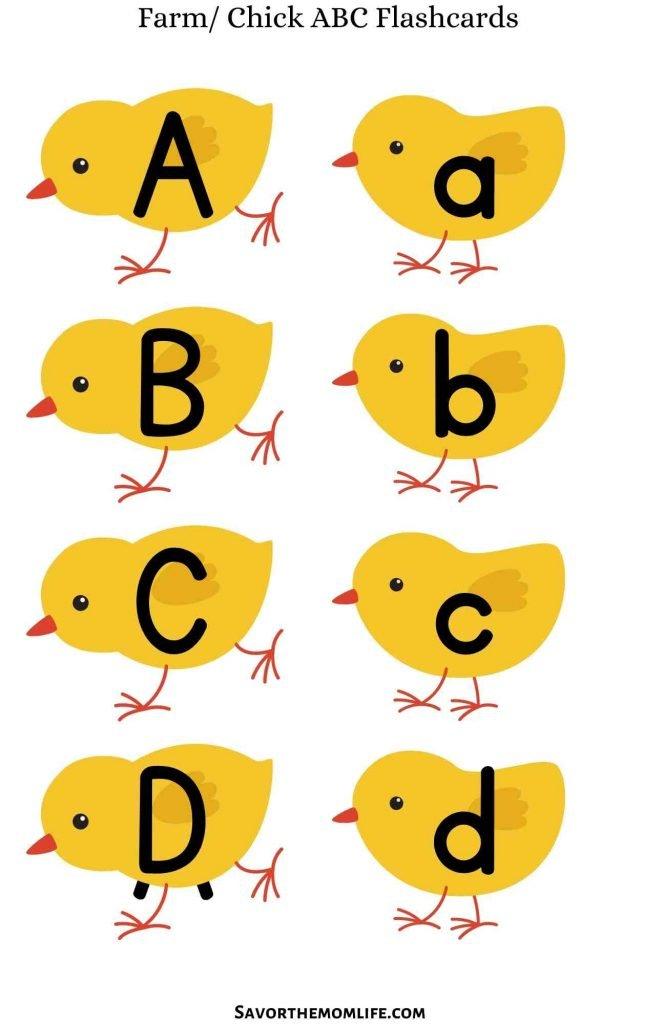 Farm Chick ABC Flashcards